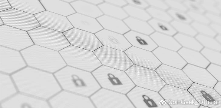 区块链和网络安全:两者如何完美配合